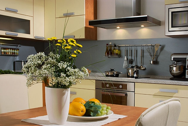 Velká fotografie kuchyně - Kuchyně 12